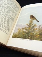 A History of Sussex Birds