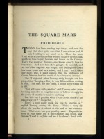 The Square Mark